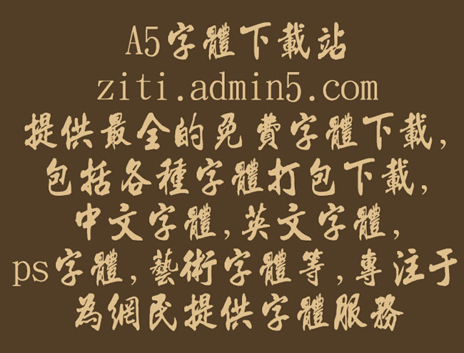 金梅毛流行国际码字体